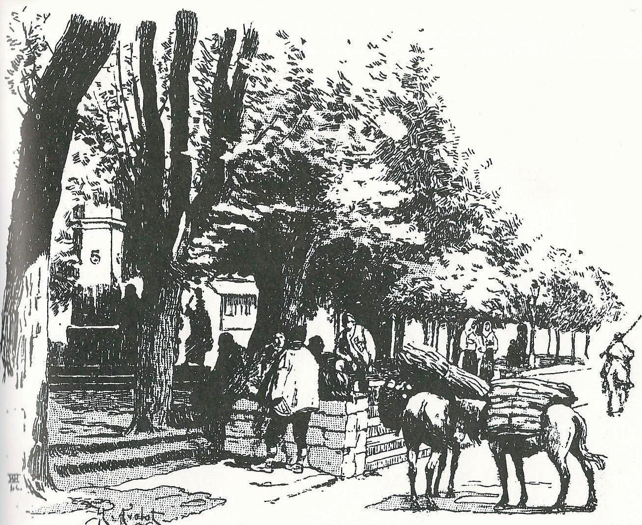 h-avelot-trznica-u-kninu-1895