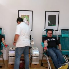 Foto: Održana akcija darivanja krvi: Pristupilo 56 darivateljagall-5