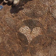 Foto: Kninski muzej završio ovogodišnju kampanju otkrivanja rimskog mozaika i konzervacije rimske vile u Orlićugall-5
