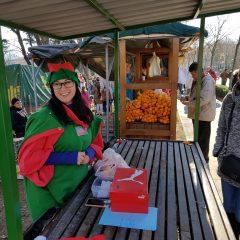 Počelo je: Kninski park prepun ljudi, osmijeha i dobrih vibracijagall-39