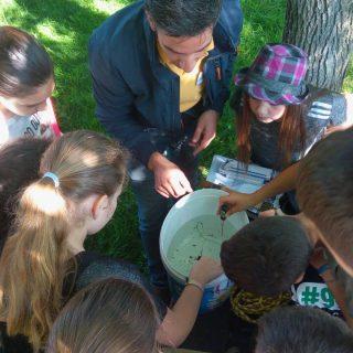 NP Krka: Održana radionica za djecu o bioraznolikosti vodenih staništagall-0