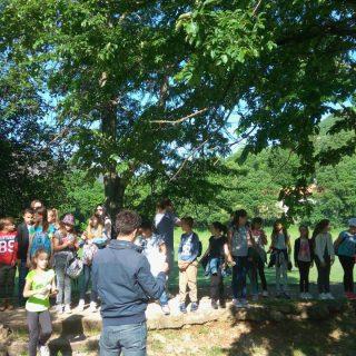 NP Krka: Održana radionica za djecu o bioraznolikosti vodenih staništagall-2