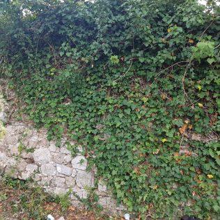 Još jedno veliko arheološko otkriće: Na Kapitulu pronađen bedem dug 100 i visok 9 metaragall-1