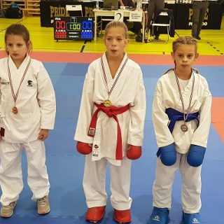 Karate klub Knin osvojio šest medalja na Prvenstvu Dalmacijegall-0