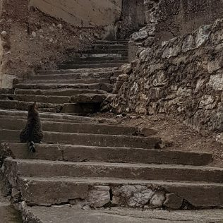 """Jeste li se ikad prošetali """"Stranom"""" – zaboravljenim starim dijelom grada?gall-4"""