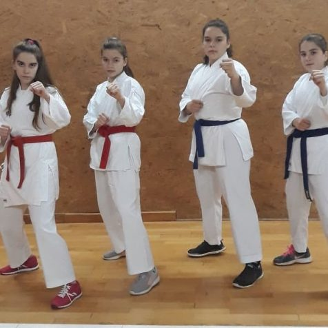Zanimljiva priča iz Tigra: U karate klubu treniraju četiri sestregall-0