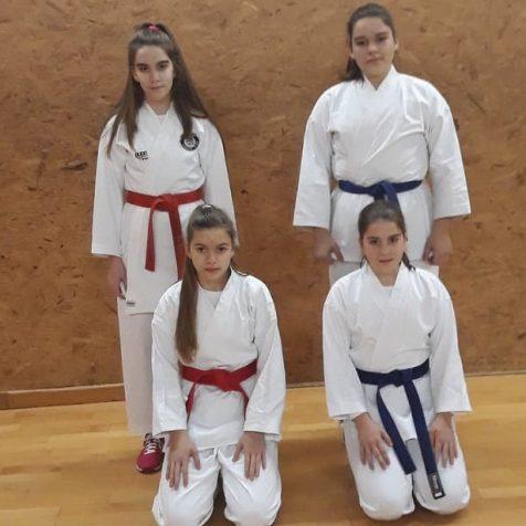Zanimljiva priča iz Tigra: U karate klubu treniraju četiri sestregall-1
