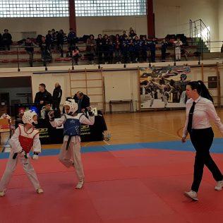 Foto: Započeo Knin Open 2019.gall-8