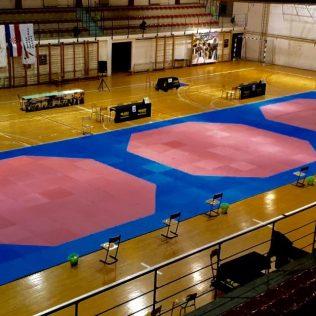 17 medalja, 4 ekipna plasmana i 3. sveukupno mjesto  za Taekwondo klub DIV Kningall-1