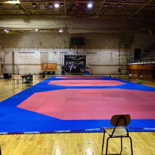 17 medalja, 4 ekipna plasmana i 3. sveukupno mjesto  za Taekwondo klub DIV Kningall-2