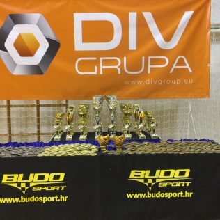 17 medalja, 4 ekipna plasmana i 3. sveukupno mjesto  za Taekwondo klub DIV Kningall-10