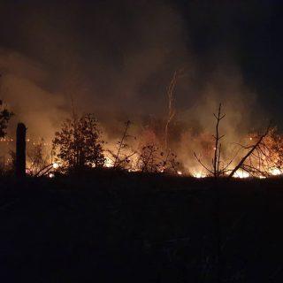 Foto: Požar kod bivše vojarne u Pađenimagall-1