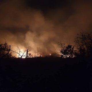 Foto: Požar kod bivše vojarne u Pađenimagall-4