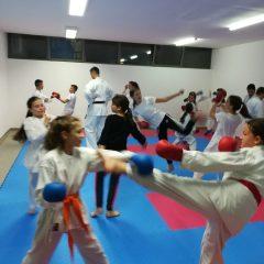 Foto: Karate klub Knin ima novu dvoranu na Novoj tržnicigall-4