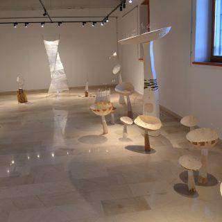 "Foto: Otvorena izložba ""Arhitektura neba""gall-7"