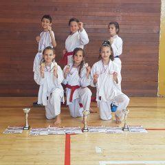 Karate klub Knin osvojio treće ekipno mjesto na Sisak kupugall-5