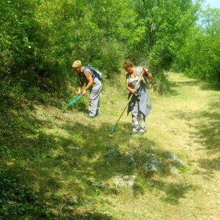 Foto vijest: Vrijedni radnici krče Spas i tvrđavugall-6