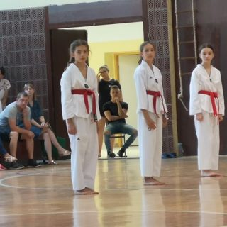 Četiri nova majstora u taekwondo klubu DIV KNINgall-7