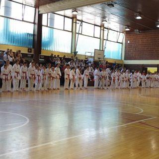 Četiri nova majstora u taekwondo klubu DIV KNINgall-6