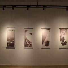 """Na tvrđavi otvorena izložba grafika """"Tragovima kamenja""""gall-9"""
