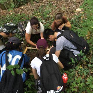 NP Krka: Međunarodni kamp studenatagall-1