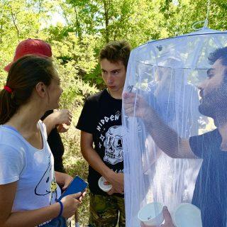 NP Krka: Međunarodni kamp studenatagall-2