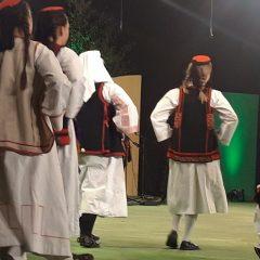 Kninjani na Vinkovačkim jesenima ispraćeni velikim pljeskomgall-27