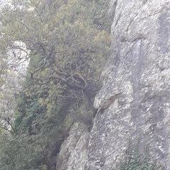 Zbog odronjavanja i opasnosti za građane sanirana stijena na Marunušigall-5
