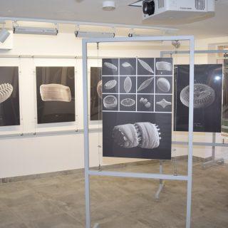 NP Krka: Predstavljen projekt Dijatomeje rijeke Krkegall-3