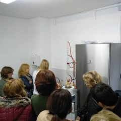 Polaznici edukacije projekta 'Ja želim raditi' u stakleniku škole Lovre Montija učili saditi ljekovito biljegall-3