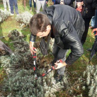 Polaznici edukacija posjetili destileriju u Kistanjama: Učili su o procesu uzgoja i preradi ljekovitog biljagall-0