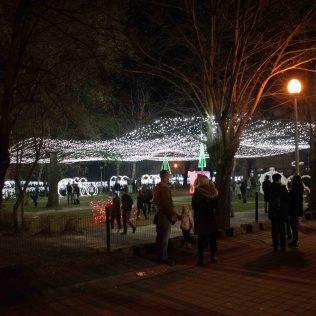 Krenulo je! Odličnim koncertom Vatre započeo Advent u Kninu 2019.gall-3
