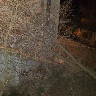 Bura u Kninu lomi stabla i stupove od strujegall-1