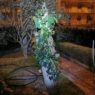 Bura u Kninu lomi stabla i stupove od strujegall-4