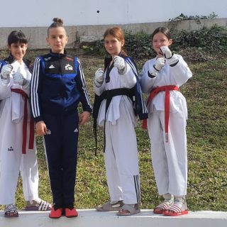Drugo ekipno mjesto mlađih kadetkinja TK DIV Knin na Dalmacija Kupugall-5