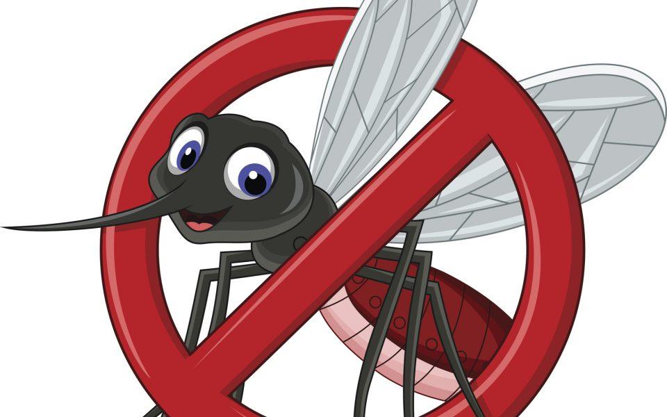 http://huknet1.hr/wp-content/uploads/2020/07/Mosquito-960x600_c.jpg