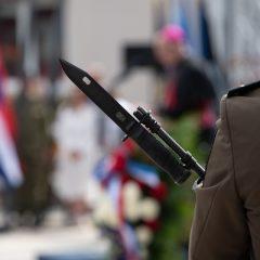 Velika foto galerija: Proslavljen Dan pobjedegall-43