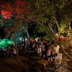 Foto: Etno fantasy u Mokrom polju; Koncert Veje u zaseoku koji je stao u vremenu Priča iz davninagall-6